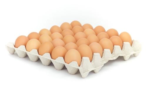 Vajcia čerstve L